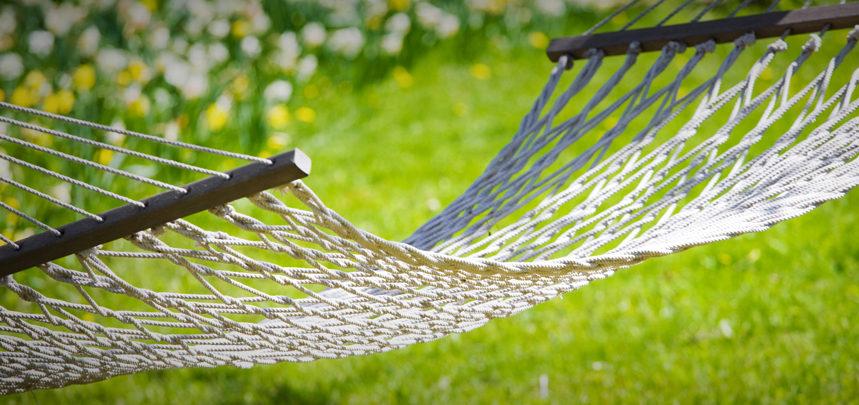 Look After Your Garden In Summer