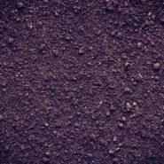 Topsoil Suppliers Category