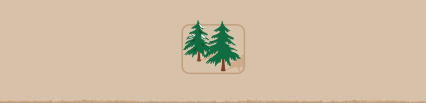 Create a Garden Habitat with an Old Christmas Tree