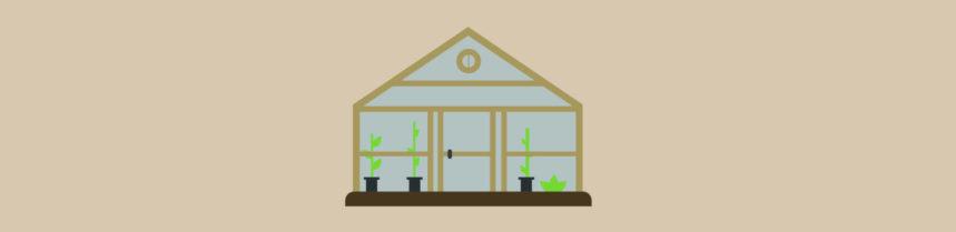 Greenhouse vector