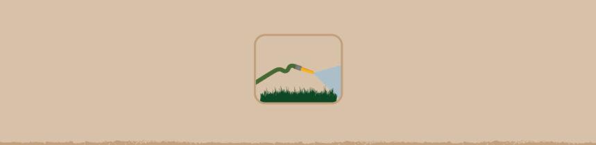 Water Wise Gardening Tips