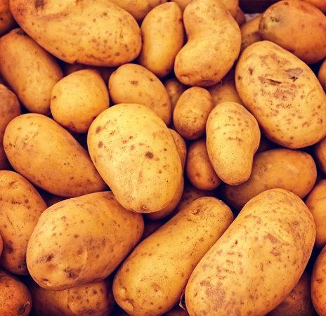 Potato Grid