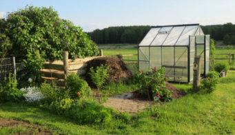 Community garden thumb