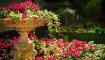 Gardens Thumbnail