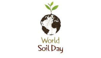 Soil Day Logo
