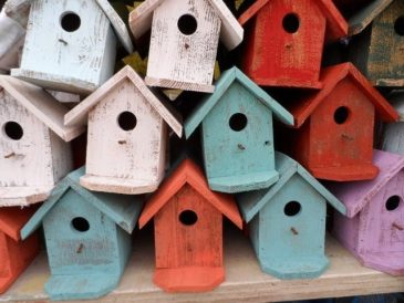 Bird house 72332 640