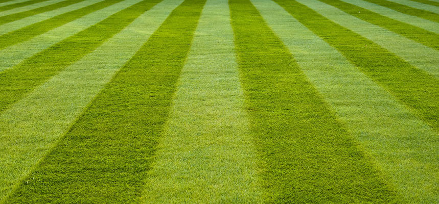 Creating Stripes On Your Lawn