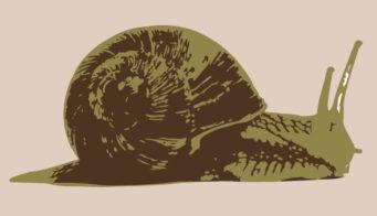 Custom snail thumb